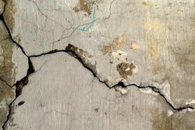 Трещины в стене - канал проникновения вредителей