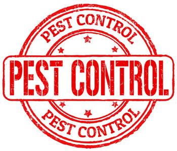 Пест-контроль