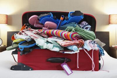 Клопы могут приехать в нашем багаже
