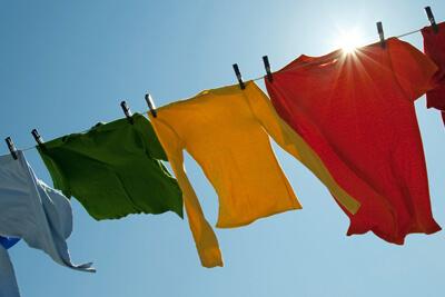 Прогревание одежды на солнце убивает моль