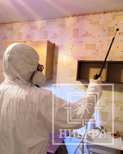 Истребление тараканов в квартире химией