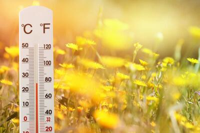 Влияние температуры на клещей