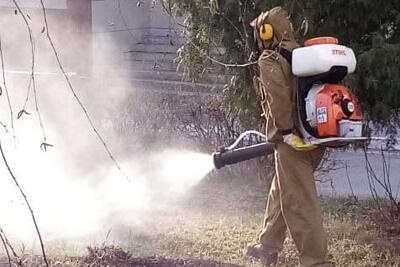 Уничтожение клещей и комаров осуществляется методом распыления