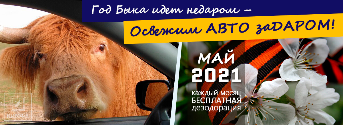 Акция «Освежим АВТО заДАРОМ!» — май 2021