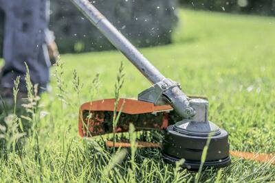 Как избавиться от оводов? Покос травы